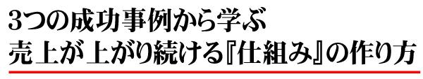3つ成功事例TOP.jpg